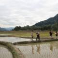 Laos-Muong-Ngoi-Trek-12