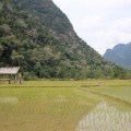 Laos-Muong-Ngoi-Trek-7