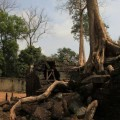 Angkor-Siem-Reap-Cambodge-26