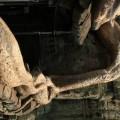 Angkor-Siem-Reap-Cambodge-35