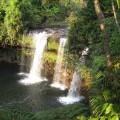 Plateau-des-bolovens-Laos-15