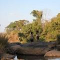 Plateau-des-bolovens-Laos-27