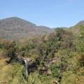 Plateau-des-bolovens-Laos-38