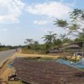 Plateau-des-bolovens-Laos-9
