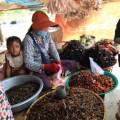 araignees-grillees-skone-cambodge-8