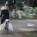 Vietnam-Ninh-Binh-Tam-Coc-6