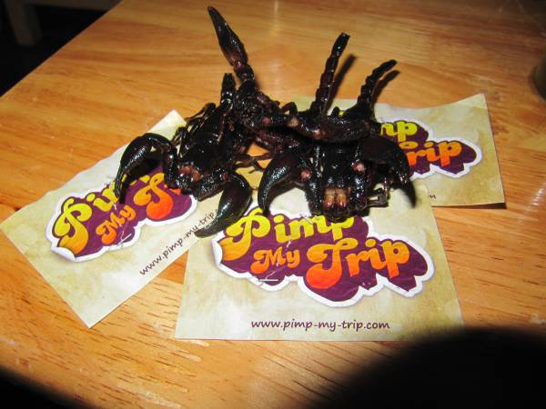 manger scorpions les defis de pimp my trip 1. Black Bedroom Furniture Sets. Home Design Ideas