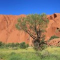 panorama-uluru_ayers-rock-red-center-australia-2