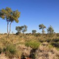 uluru_ayers-rock-red-center-australia-20
