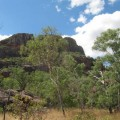 kakadu-national-park-australie-64