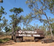 litchfield-national-parc-darwin-australie--12