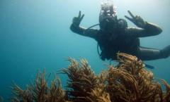 plongee-cairns-tusa5-australie-reef-26