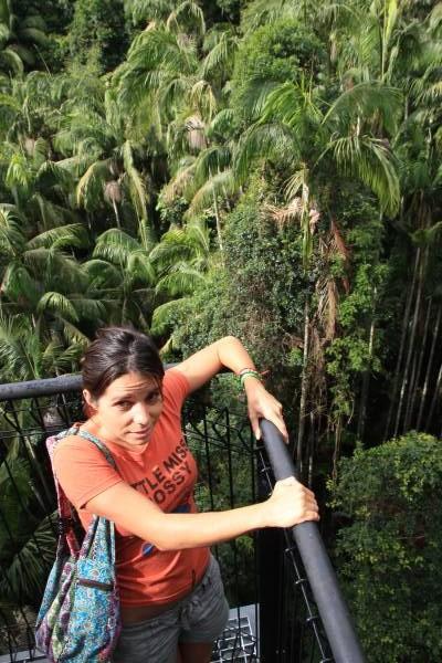 skywalk sur la canop e rainforest de tamborine australie pimp my trip. Black Bedroom Furniture Sets. Home Design Ideas
