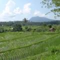Tirtagangga-Besakih-Mont-Batur-Bali-27