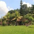 Tirtagangga-Besakih-Mont-Batur-Bali-5