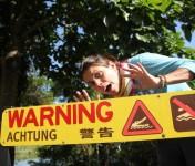 dantree-rainforest-cap-tribulation-australie-9