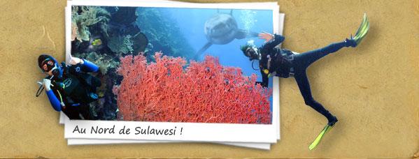 Au Nord de Sulawesi