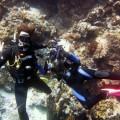 plongee-bunaken-sulawesi-indonesie-2