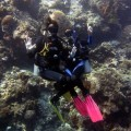 plongee-bunaken-sulawesi-indonesie-3