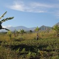 volcan-rinjani-lombok-indonesie-2