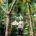 voyage-vietnam-ho-chi-minh-ville-7
